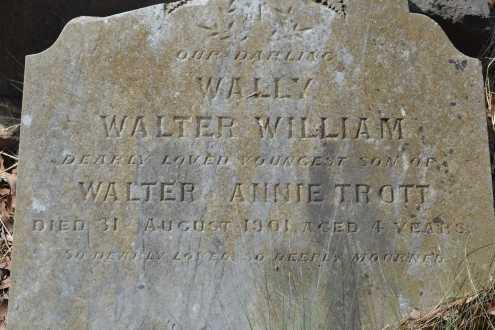 Wally Trott