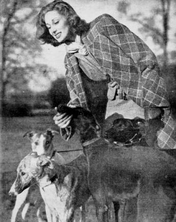 Vyner and greyhounds