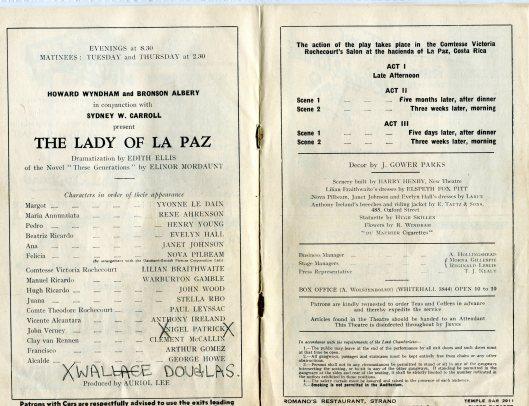 lady of la paz030