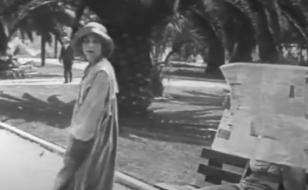 The flirt 1917